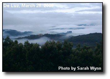 Rising Mists