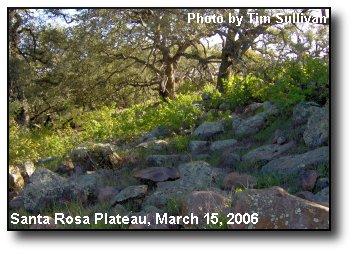 Granite Slope