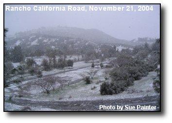 De Luz Snow