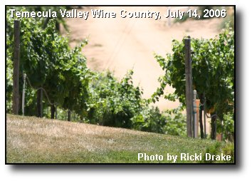 Fruitful Vineyard